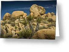 Boulders In The Joshua Tree National Park Greeting Card