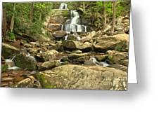 Boulders Logs And Lower Laurel Falls Greeting Card