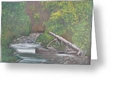 Boundary Creek  Bc Greeting Card
