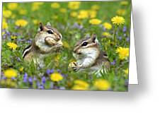 Bountiful Generosity Greeting Card