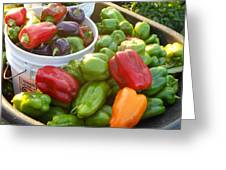 Bountiful Peppers Greeting Card