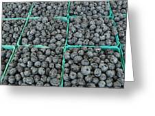 Bounty Of Blueberries Greeting Card