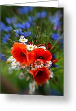 Bouquet Of Fresh Poppies Camomiles And Cornflowers Greeting Card