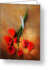 Bouquet Of Red Poppies And White Ribbon Greeting Card