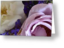 Roses And Violets  Greeting Card
