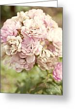 Bouquet Of Vintage Roses Greeting Card