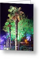 Bournemouth Winter Gardens At Night Greeting Card