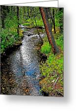 Bow River Near Lake Louise Campground In Banff National Park-ab Greeting Card