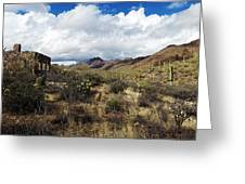 Bowen Homestead Ruins Greeting Card