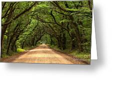 Bowing Oak Trees Greeting Card