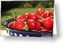 Bowl Of Cherries In The Garden Greeting Card