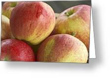 Bowl Of Royal Gala Apples Greeting Card