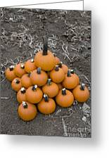 Bowling For Pumpkins Greeting Card