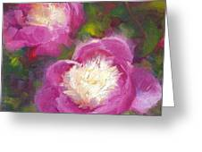 Bowls Of Beauty - Alaskan Peonies Greeting Card by Talya Johnson