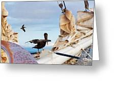 Bowsprit Pelicans Greeting Card