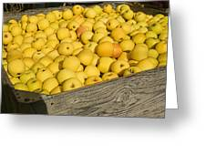 Box Of Golden Apples Greeting Card