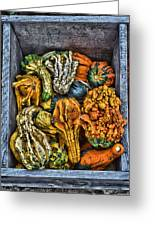 Box Of Gourds Greeting Card