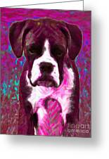Boxer 20130126v7 Greeting Card by Wingsdomain Art and Photography
