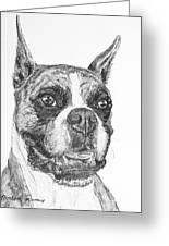 Boxer Dog Sketch Greeting Card