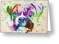 Boxer Splash Greeting Card