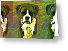 Boxer Three 20130126 Greeting Card by Wingsdomain Art and Photography