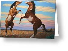 Boxing Horses Greeting Card