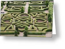 Boxwood Garden - Chateau Villandry Greeting Card