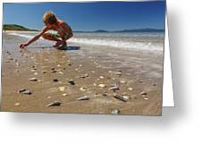 Boy Picking Seashells On The East Coast Greeting Card