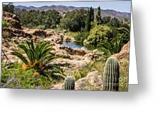 Boyce Thompson Desert Vista Greeting Card