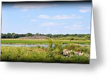 Boylan Marsh Greeting Card