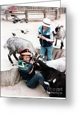 Boys Feeding Hungry Goats  Greeting Card