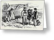 Boys Of The Claddagh Galway 1873 Greeting Card