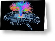 Brain Shaped Circuit Board With Fibres Greeting Card