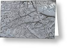 Branched Snow Greeting Card