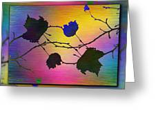 Branches In The Mist 71 Greeting Card
