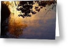 Branches Misty Pond Sunrise Greeting Card