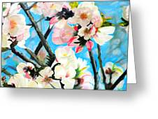 Branches Of Almond Tree Greeting Card