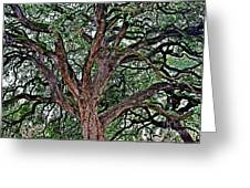 Branches Of Brio Greeting Card