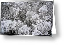 Branches Of Snow Greeting Card