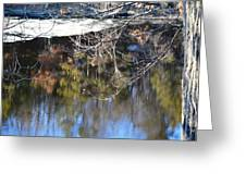 A Wisconsin River Scene Greeting Card