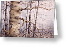 Branching Poplar Greeting Card