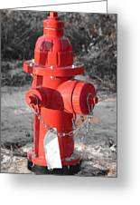 Brand New Red Hydrant On Bw Greeting Card