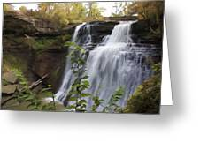 Brandywine Falls Greeting Card