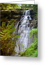 Brandywine Falls Of Cuyahoga Valley National Park Waterfall Water Fall Greeting Card