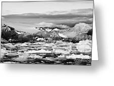 brash sea pack ice forming together with dirty blue iceberg as winter approaches cierva cove Antarct Greeting Card by Joe Fox