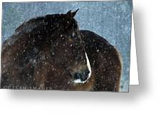 Braving The Blizzard Greeting Card