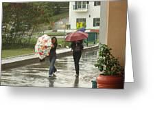 Braving The Rain Greeting Card