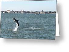 Breaching Dolphin Greeting Card