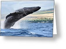 Breaching Humpback Whale Greeting Card