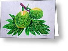 Bread Fruit Greeting Card